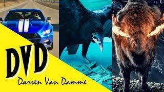 My Favorite TV Shows | Best Series on Netflix, HBO, Prime & More! | Darren Van Damme