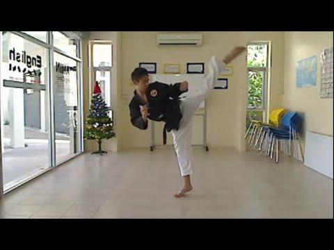 Muay Thai Shadow Kicks (Bas Rutten teep + Brazilian kick) Image 1
