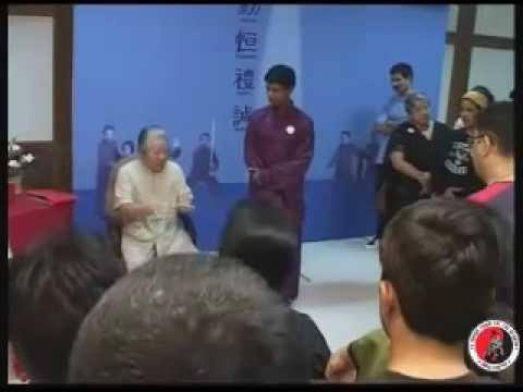 Grandmaster Fu Sheng Yuan's  India Visit 2007 -  Fu Sheng Yuan Tai chi Academy - India Chapter 2/2