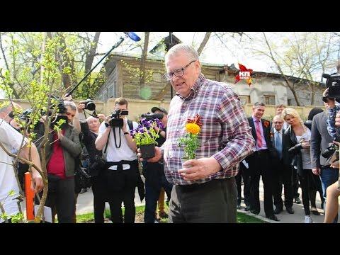 Владимир Жириновский посадил в Москве смоленскую клумбу
