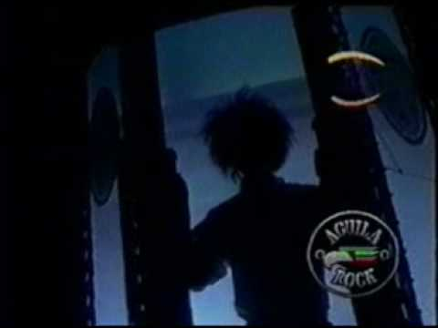 caifanes - sera por eso (video) Video