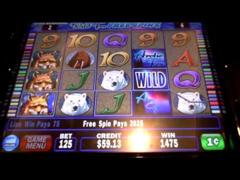 Arctic Fox Slots - Review of IGTs Arctic Fox Slot Machines