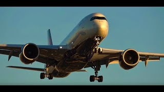 [HD] 90+ Mins. Watching Airplanes LAX Airport, Los Angeles Plane Spotting In-N-Out, Imperial Hill