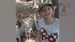 Forget CATS and DOGS! Hilarious KIDS vs ZOO ANIMALS are SO FUNNIER!   You'll DIE LAUGHING!