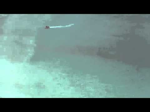 Shark Attack in Fish Hoek | Cape Town | South Africa September 2011 - See the Shark!!