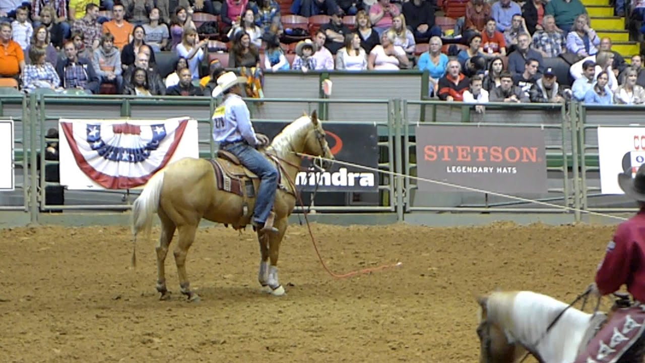 Calf Roping Wallpaper Worth Rodeo Calf Roping