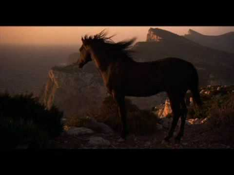 Black Dream - Black Stallion Music Video