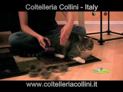 FURminator deLuxe – spazzola professionale per la tolettatura per gatti e cani – Coltelleria Collini