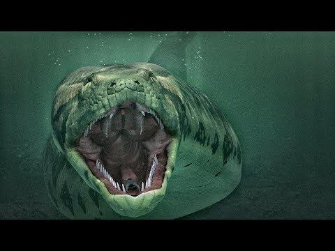 10 Ископаемых гигантов, которых мы не увидим