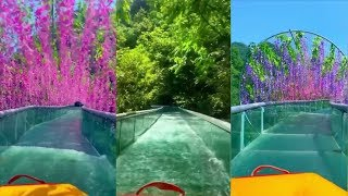 Glass water slide allows tourists to float down under flower ceiling