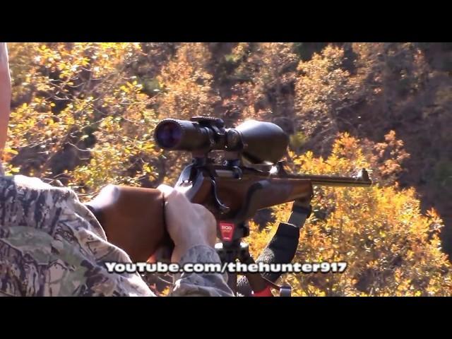 K.Maraş Andırın Domuz Avı Wild Boar Hunting