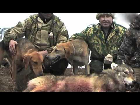 рязань охота и рыбалка