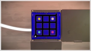 The Witness - Puzzle Game