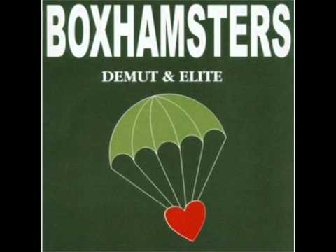 Boxhamsters - Mauser