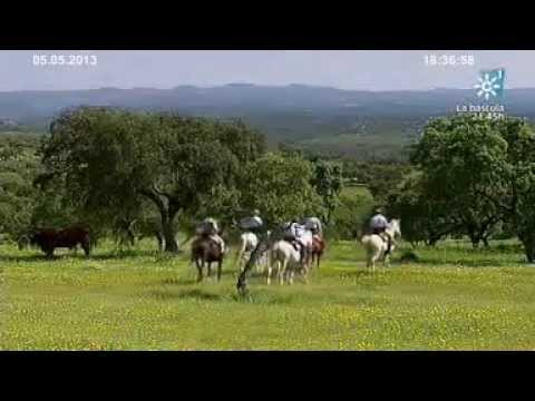Escuela de Vaqueros. Tierra y Mar nº 964 Emisión  5-05-2013