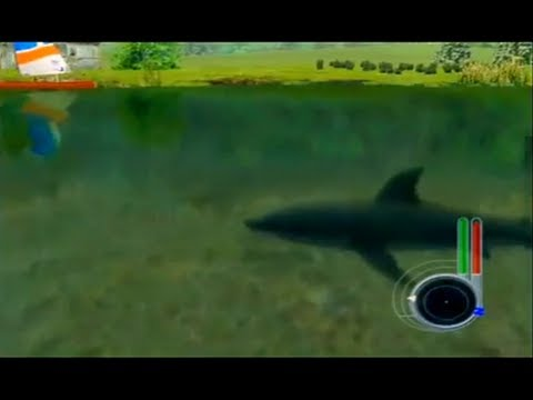 Shark attack on land