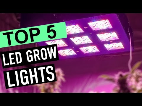 BEST 5: Led Grow Lights 2018
