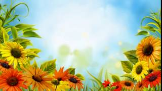 Free HD Wedding background, Free download motion background, Free video FLOWER 002