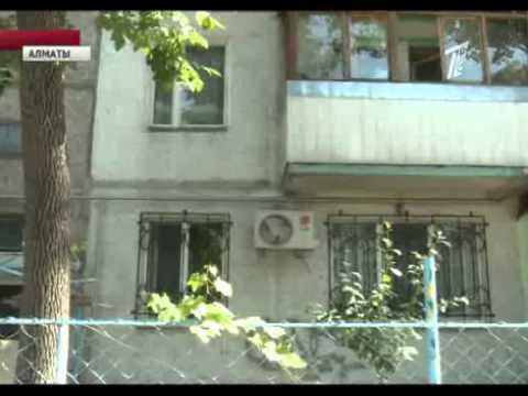 Алматинцы страдают от нашествия блох