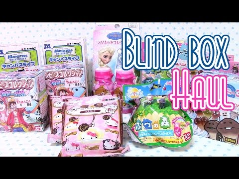 ShopaHAULic! Cute Blind Boxes!