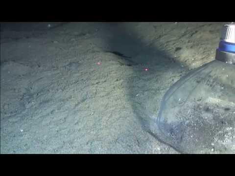 Забор газов со дна Японского моря