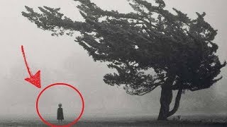 Top 10 Creepy Photos Found Online
