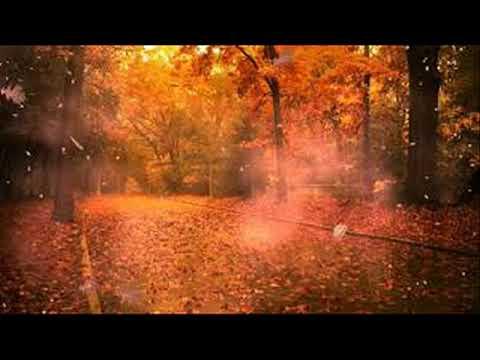 Kisfalvy Ferenc: Úgy sír az őszi szél