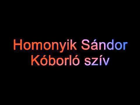 Homonyik Sándor - Kóborló Szív (lyrics)