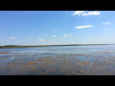 форум рыбаков краснодарского края щука