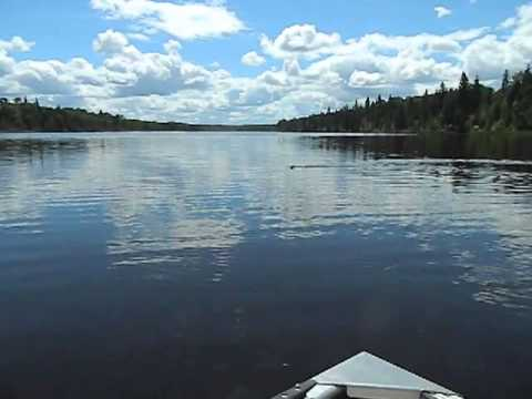 Poplar Point Red Lake Beaver Circling Boat