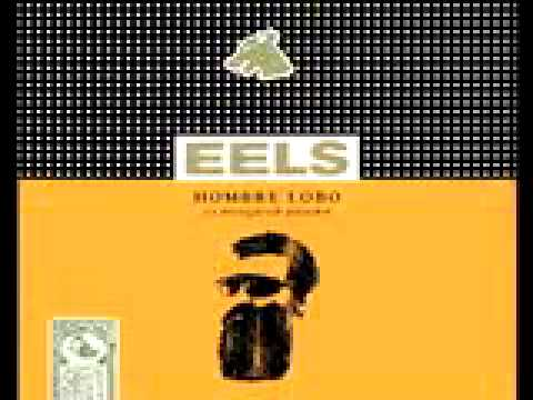 Eels - The Longing