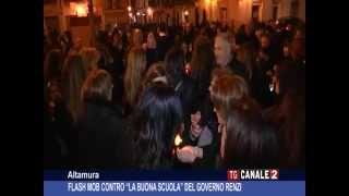 video SERVIZIO TG CANALE 2 -