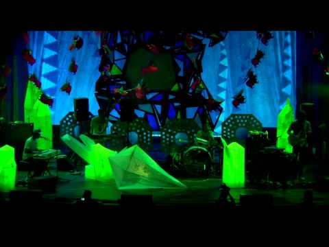 Animal Collective Live at Prospect Park (Centipede Hz DVD)