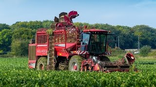 Agrifac Holmer Terra Dos T4-30 Lifting Sugarbeet