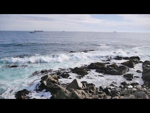 Puerto de San Antonio y sus Lobos Marinos, Chile, 2014 (1080p)