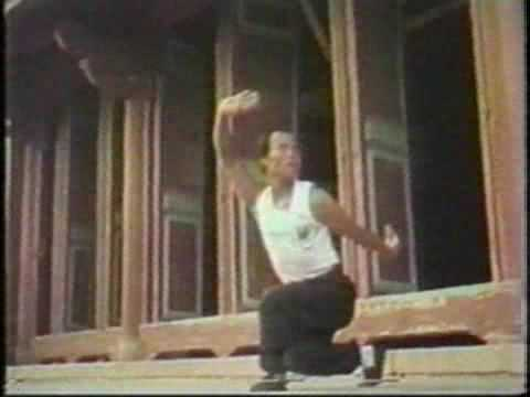 Northern Praying Mantis KungFu Methods