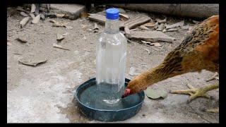 Cách chế 1 chiếc bình uống nước tự động cho gà