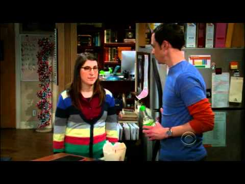 The Big Bang Theory S04E20 - Sheldon and Amy Finally Do It