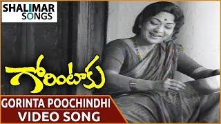 Gorintaku Movie || Gorinta Poochindi Video Song || Shobhan Babu, Sujatha || Shalimar Songs