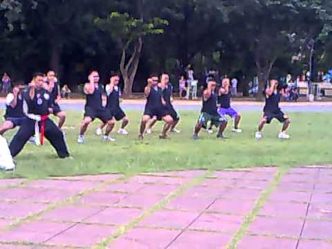 JET-SQUAD MARTIAL ARTS TRAINING FOR VIP SECURITY PROTECTION AGENT Image 1