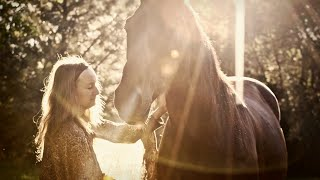 The Path of the Horse Documentary Movie