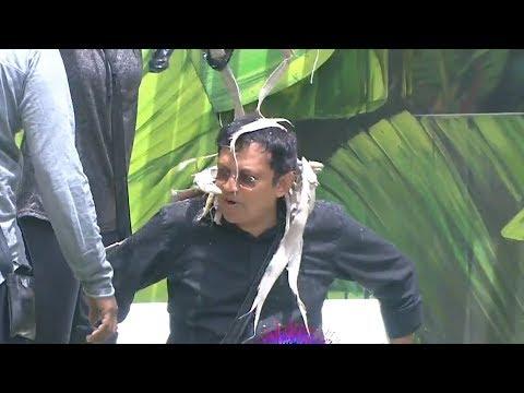 Bigg Boss 2 Telugu Episode 52 | Kaushal | Nandini Rai | Pooja | Nani | YOYO Cine Talkies