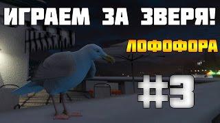 #3 GTA 5 PC - Как Играть За Животных? (Лофофоры)