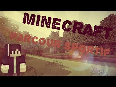 Vidéo délire sur Minecraft avec LuigiMove et Alexis !