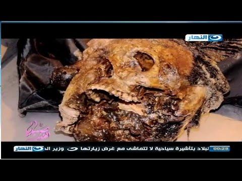 صبايا الخير ريهام سعيد    رجل يقتل زوجته و يضعها في برميل اسمنت و يقوم بعمل محضر بفقدانها Music Videos