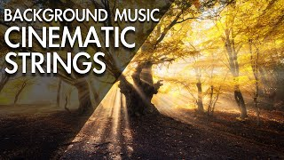 Amazing Beautiful Cinematic Background Music For Audio
