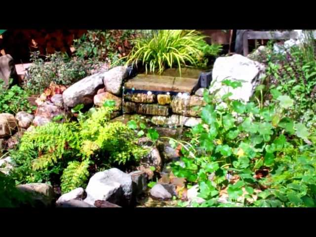 Landscape Manhattan Beach  - Small  Garden Paradise Design