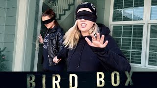 24 Hour Bird Box Challenge