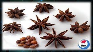 Beneficios y propiedades del anis estrellado