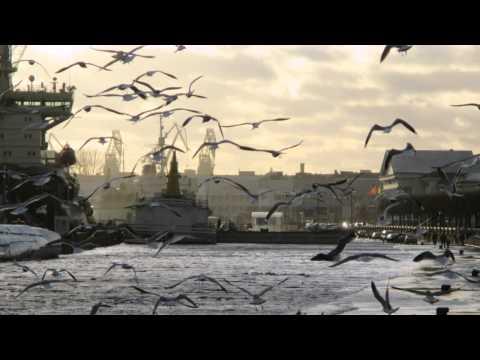 Макаревич Андрей - Пусть я не разгадал чудес